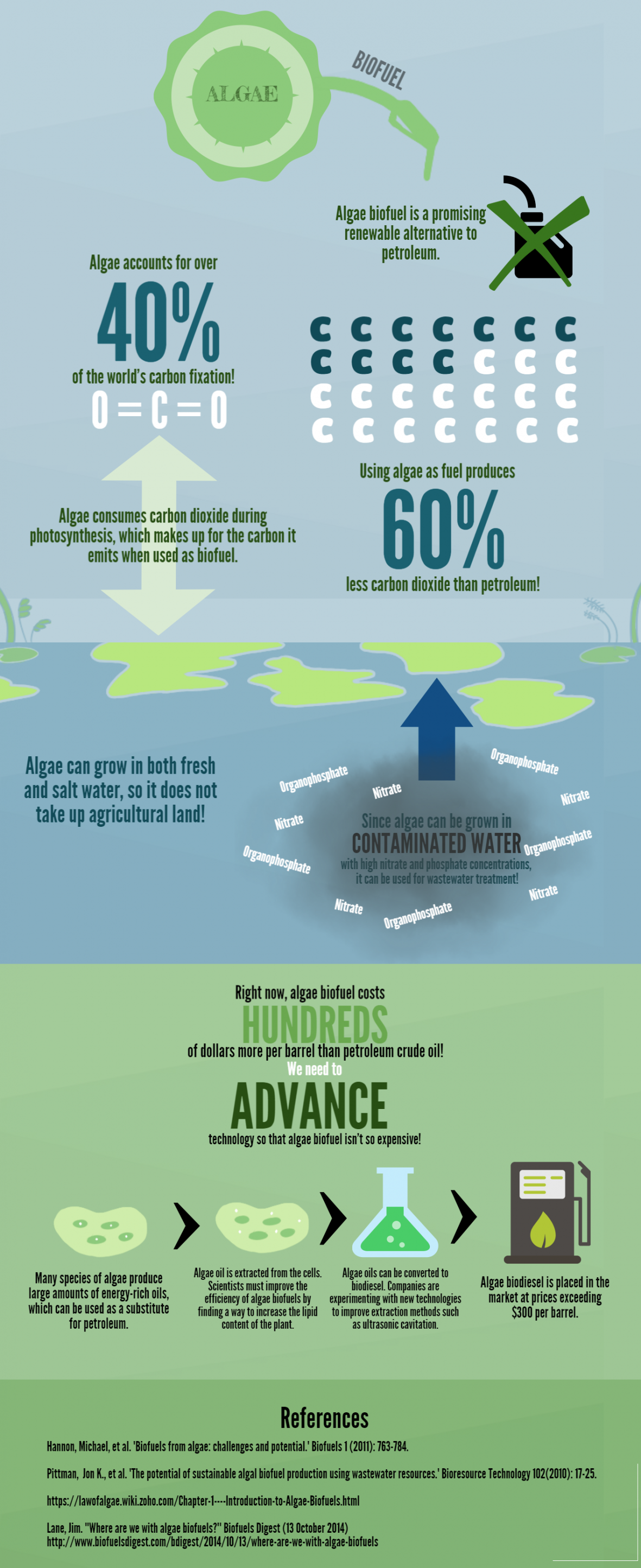 infografic bioenergy - Next Generation of Biofuels